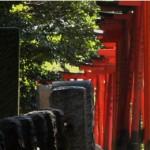 ReelAsianco-presents Tokyo Waka