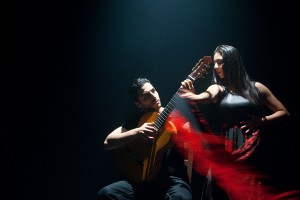 web-ready-Flamenco_June-2014_089